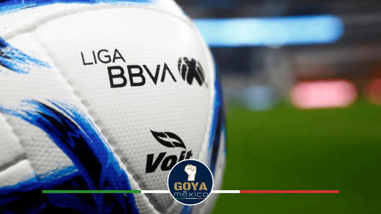 El Próximo Miércoles se Decidirá qué Pasará con la Liga MX.