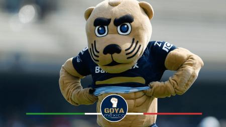 Goyo Puma, la Mejor Mascota del Fútbol Mexicano.