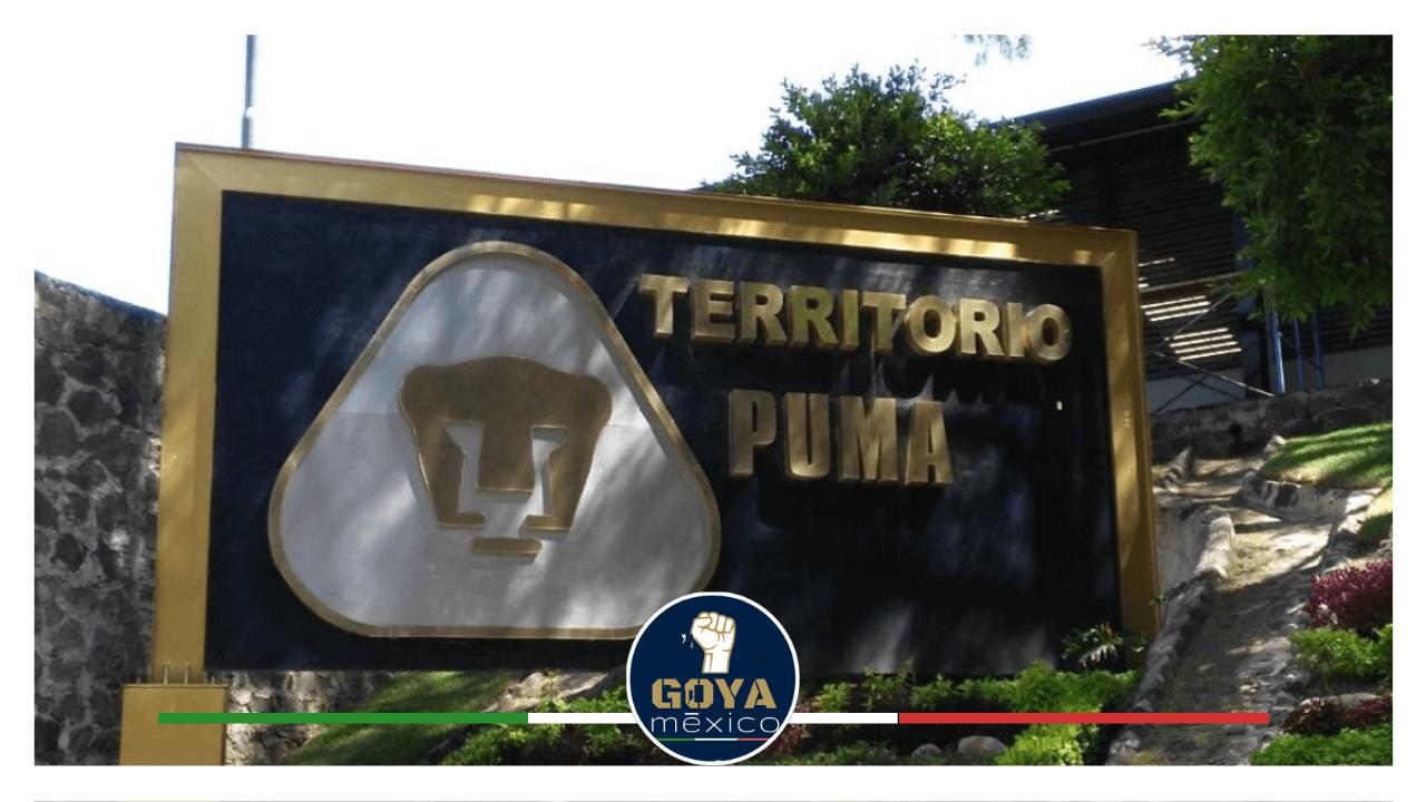 ¿Qué ha pasado con la Cantera Puma?