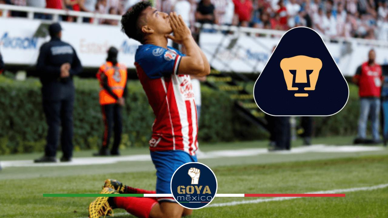 ¿Cómo van las negociaciones entre Pumas y Fernando Beltrán?